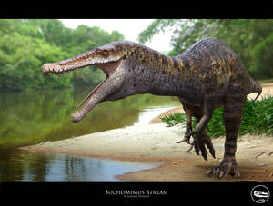Suchomimus Stream