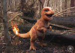 Charmander 2 Watermarked