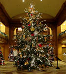 There's a tree in the grand hotel