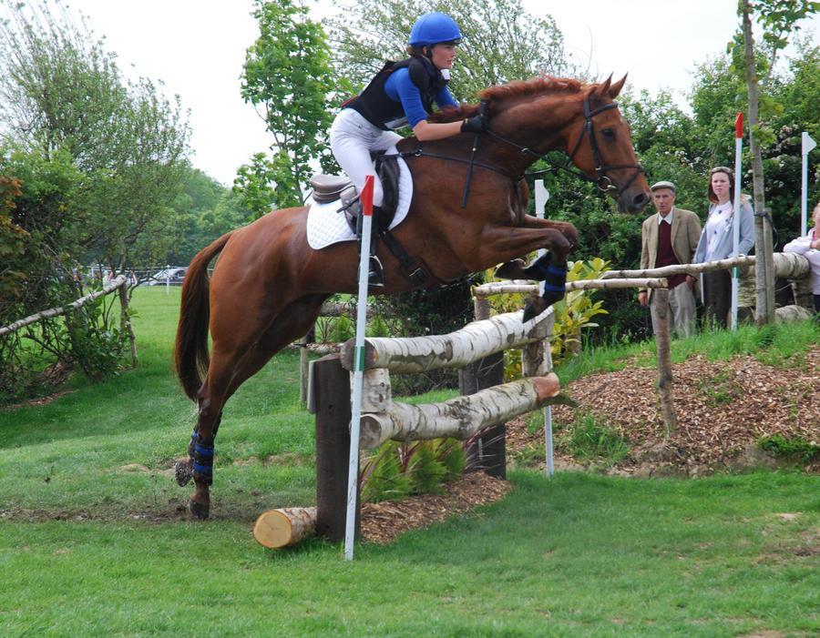 Chestnut horse jumping~ by Saixpuppy222 on DeviantArt - photo#5
