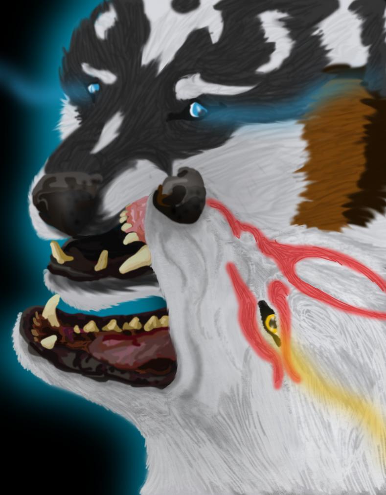 Amaterasu VS Wolf Link by Saixpuppy222