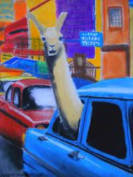 A llama in New York by Jujuly21