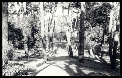 Pasteleira Park