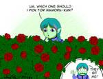 Picking Up a Rose