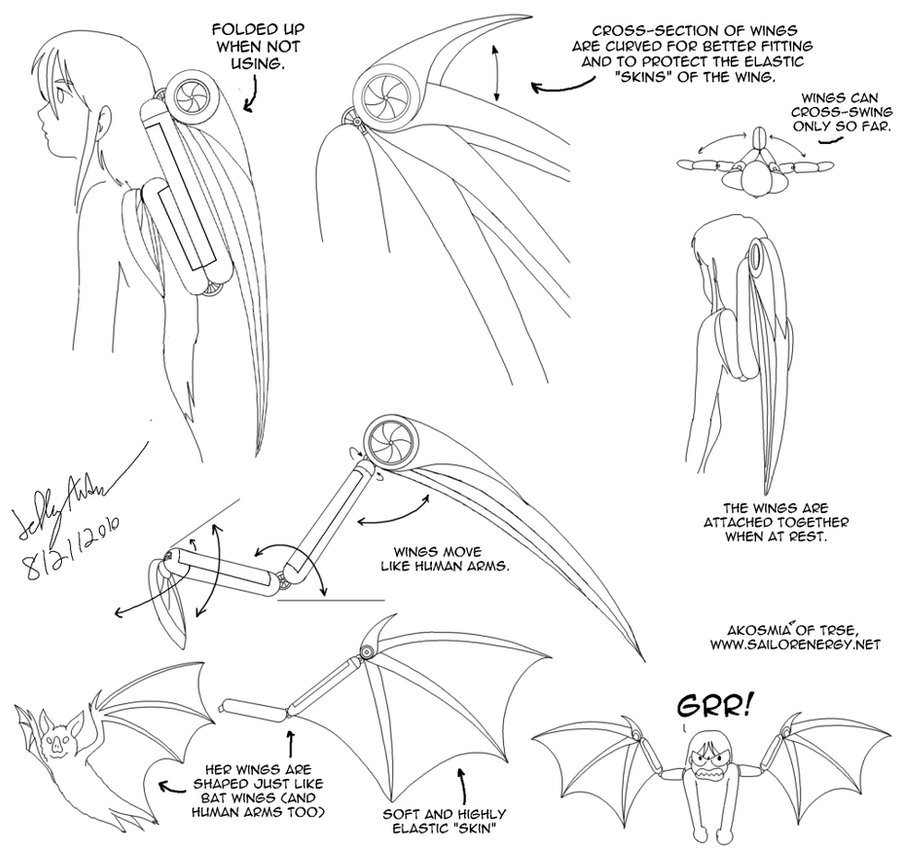 Diagram Of Akosmia S Wings By Sailorenergy On Deviantart