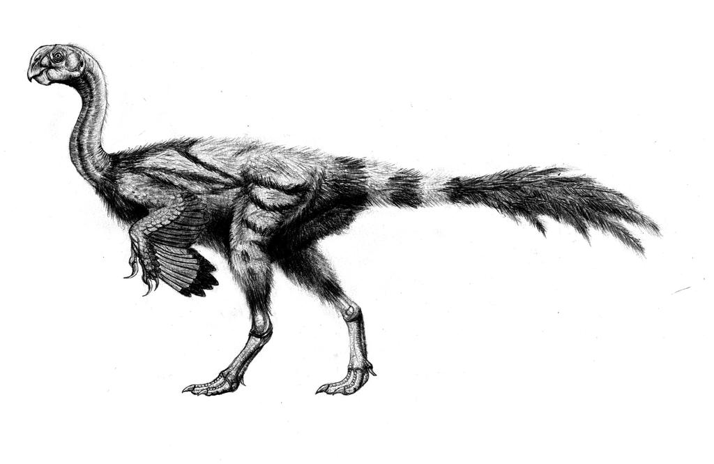 Late Cretaceous terror bird by Anuperator