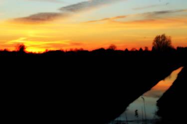 Go go to sunset