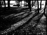 October contrast