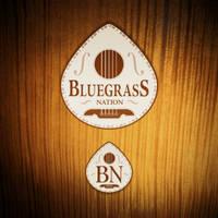 Bluegrass Nation visual identity by vsMJ
