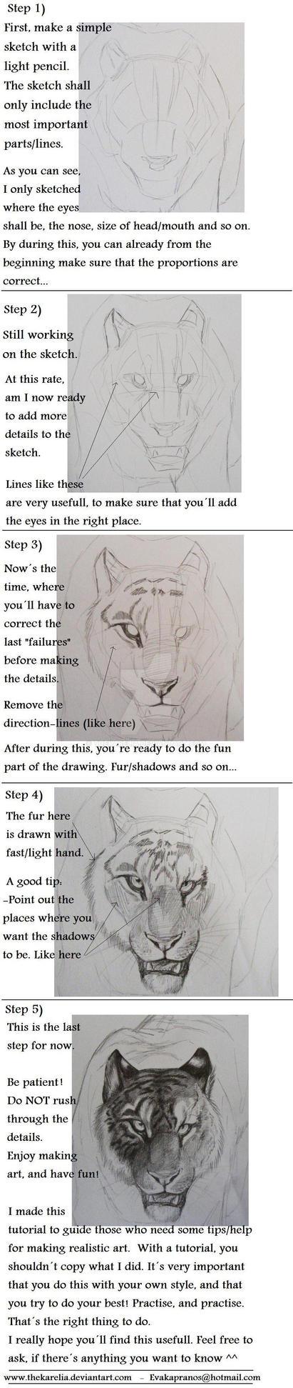 Realistic Tiger Tutorial by TheKarelia