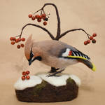 Needle felted Bohemian waxwing by Hillamer