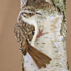Needle felted Treecreeper