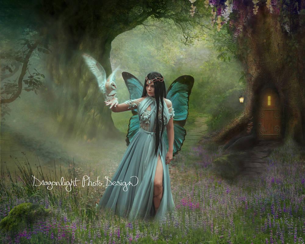 Fairy Glen