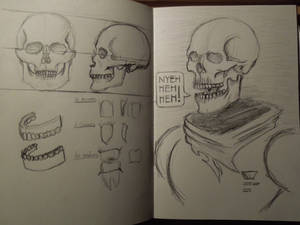 Day 1: The Skull