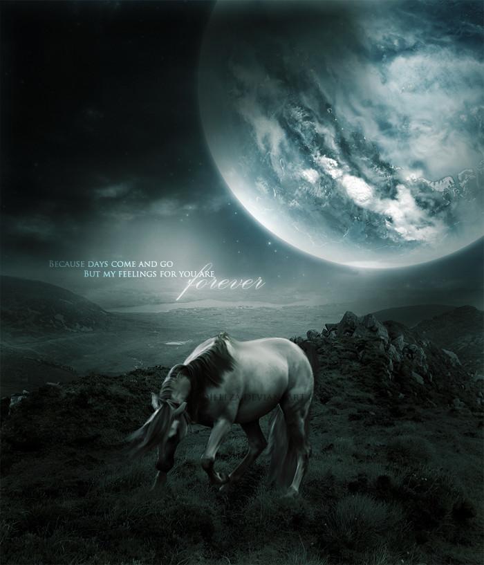 ^ Twilightstars ^ horses Ae65315e89a67ba1009b70b0acb3c031