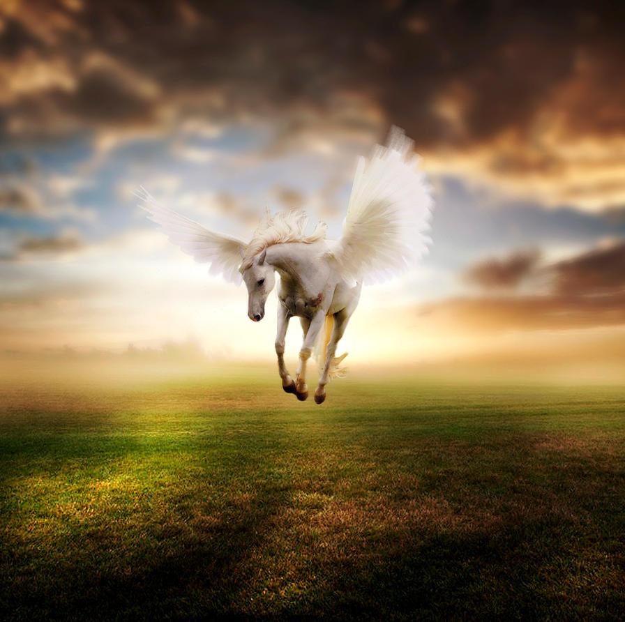 Pegasus by shaggy6963