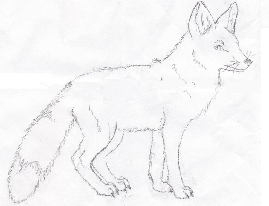 simple fox sketch