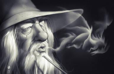 Gandalf and Smaug by Mundokk