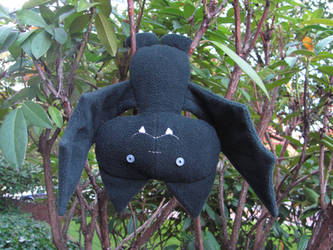 Eco-friendly, Spooky Bat by mypetmoon