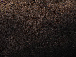 Black Leather 2 by Hjoranna