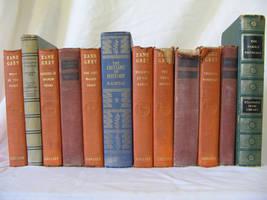 Old Books 3 by Hjoranna