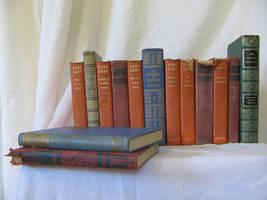 Old Books 4 by Hjoranna