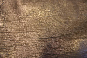 Black Leather 5 by Hjoranna