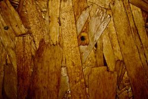 Wooden 2 by Hjoranna