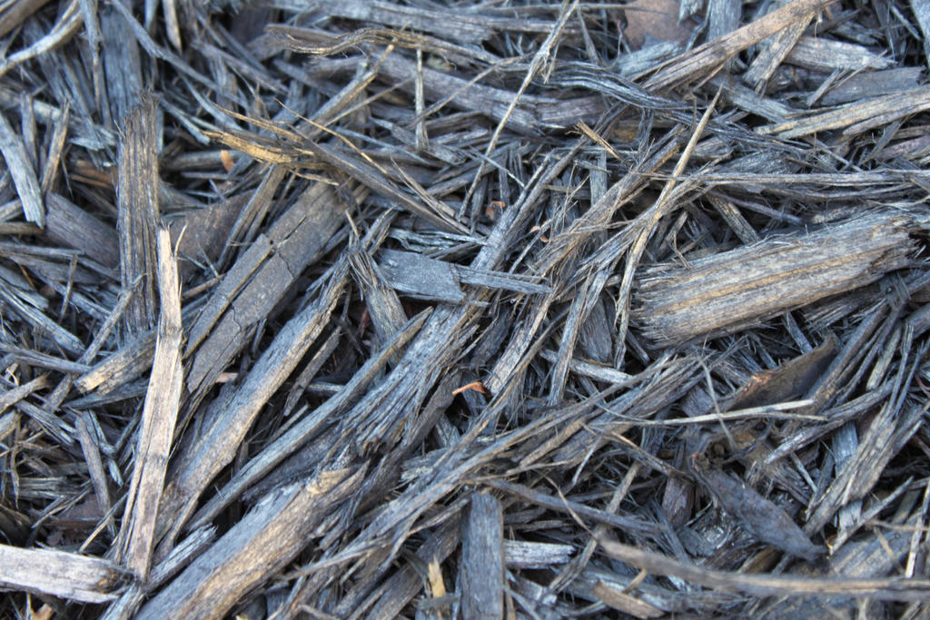 Wood Chips by Hjoranna
