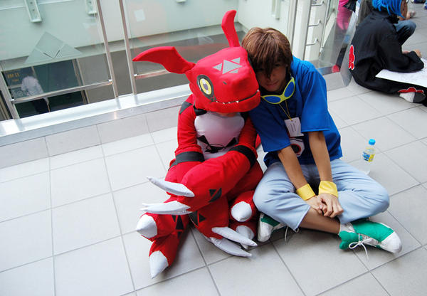 Ozine Fest 09 - Digimon Tamers by roddzki