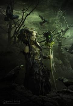 The dark mage