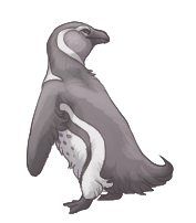 dove_the_penguinny_by_diseasedking-daso491.png