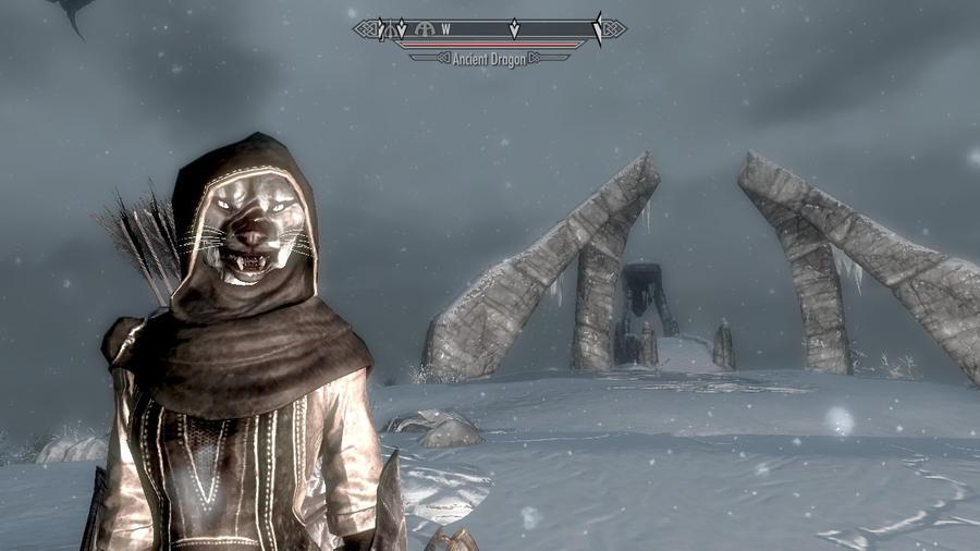 Skyrim Character reference screenshot by xXJikoTosuiTusraraXx
