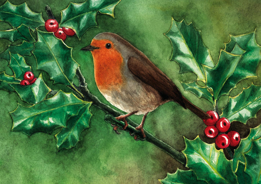 little red robin wating for christmas by antoniavogel - Is Red Robin Open On Christmas