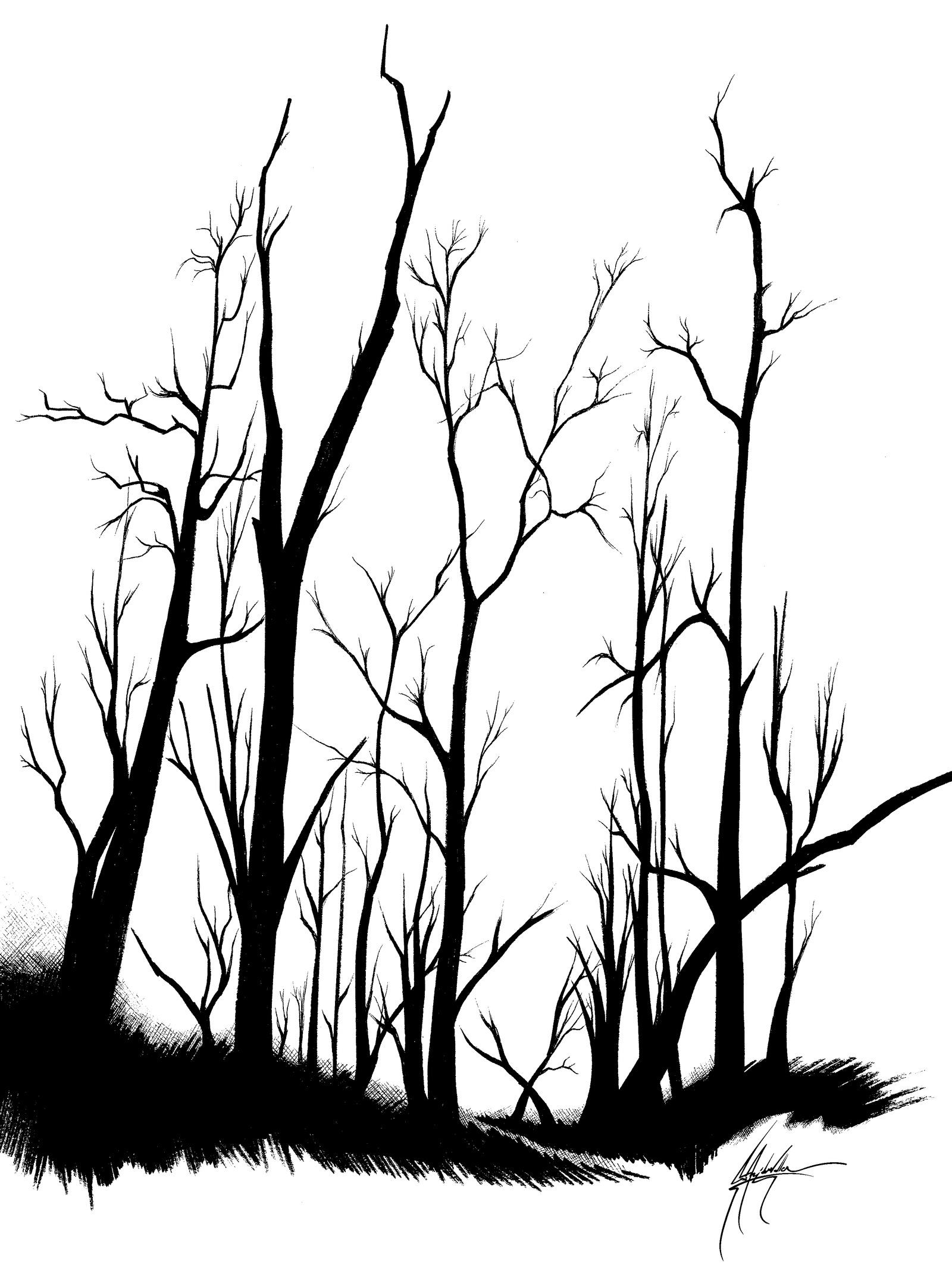 Trees by CAVIII