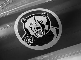 Bear Plane Art by Ravenb2