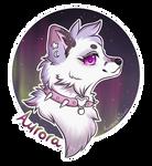 Aurora Badge by kitsuwn