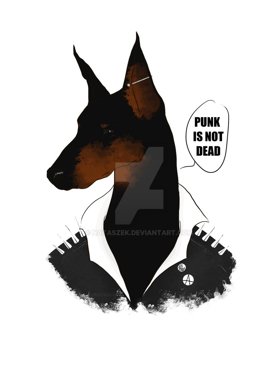 Punk by nataszek