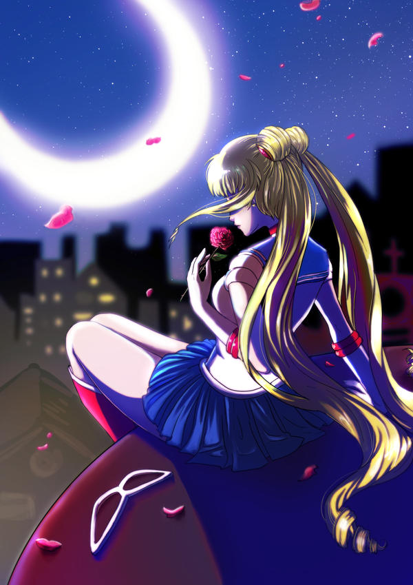 Sailor Moon by Amaipetisu