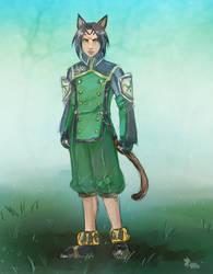 Commission: Ginn
