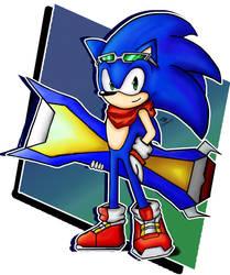 Sonic Riders Fan art