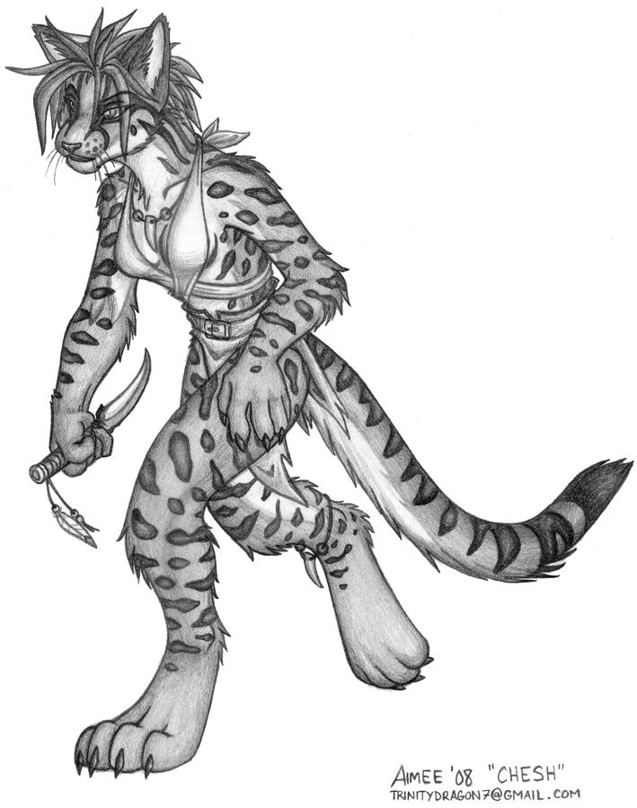 Margay Cat Drawing Er-cat.jpg