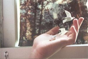 free as a bird by insanelybeautiful