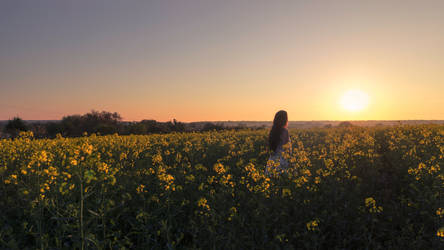 When The Sun Sets by MarieStars