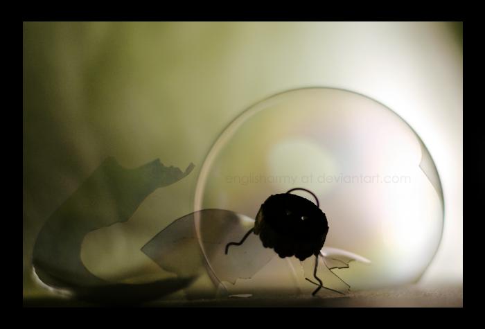 Orb by englisharmy