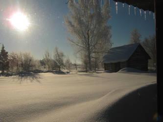 Winter by Zyklonia1678