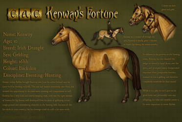EAE Kenway's Fortune by ElreniaGreenleaf