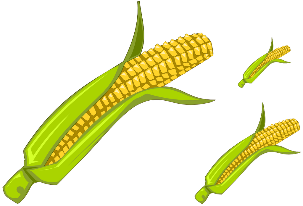corn - clipartvyoma on deviantart
