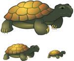 Tortoise - Clipart