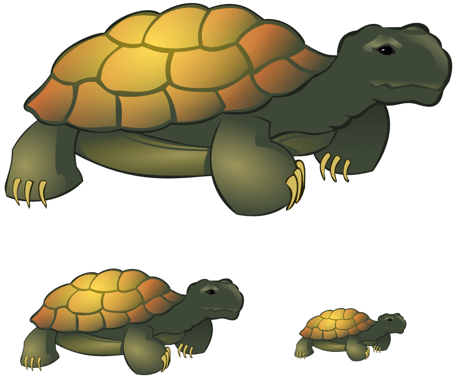 tortoise clipart by vyoma on deviantart rh vyoma deviantart com clipart tortoise and the hare tortoise clipart pictures